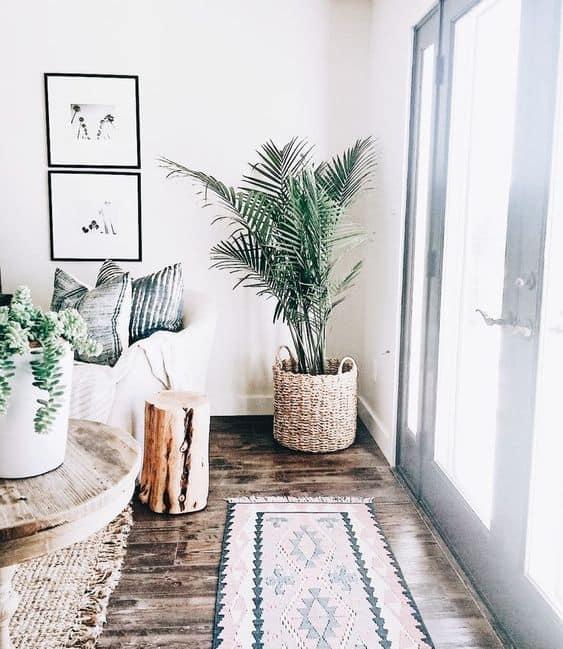 Dale vida a tu rincón con plantas